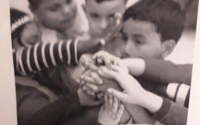 20N: Dia dels Drets dels Infants